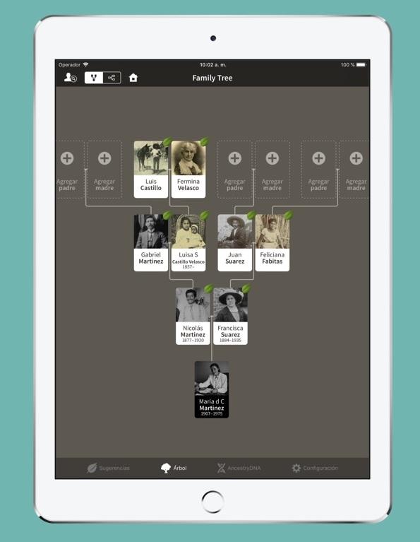 Ancestry app