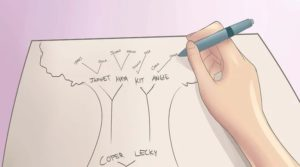 Pasos para hacer un árbol genealógico familiar