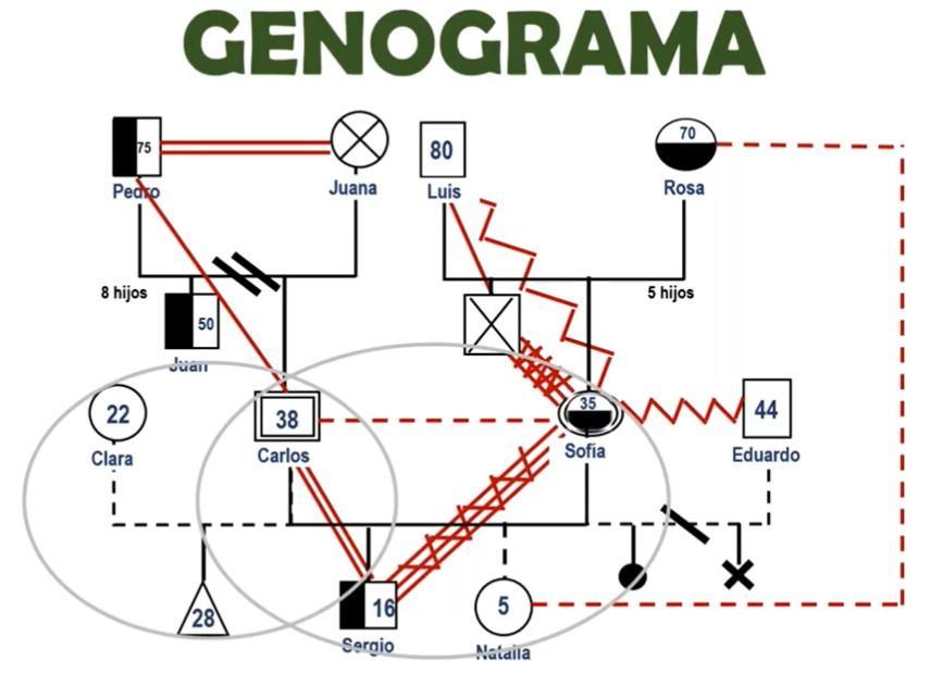 ejemplo de genograma